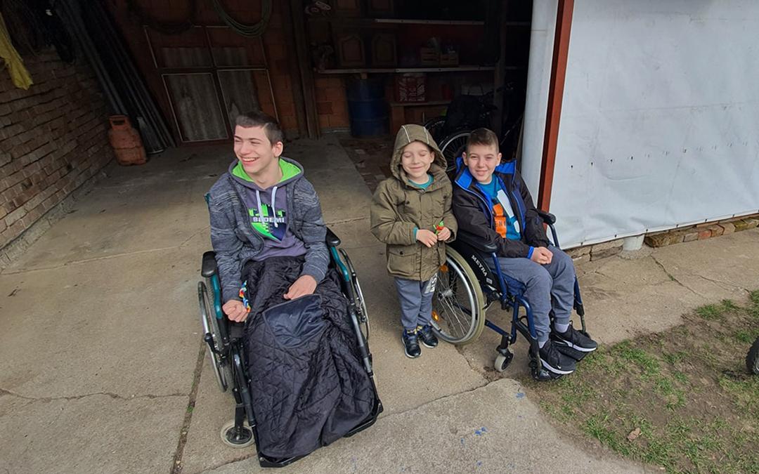 Вељко (6), Алекса (12) и Лазар (15)